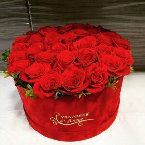 Flower box X1